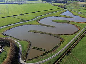 Selwyn District Council Wetlands     2013
